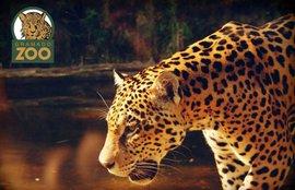 gramado-zoo-main.jpg