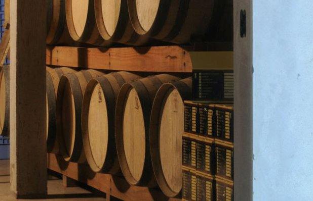 vinicolas-m5.jpg