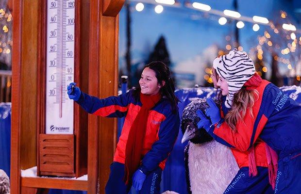 snowland-ingresso-parque-neve-imagem4.jpg