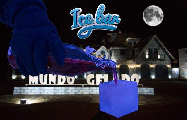 ice-bar-park-mundo-gelado-imagem.jpg